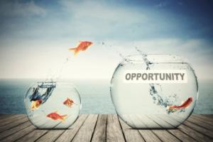 Opportunité